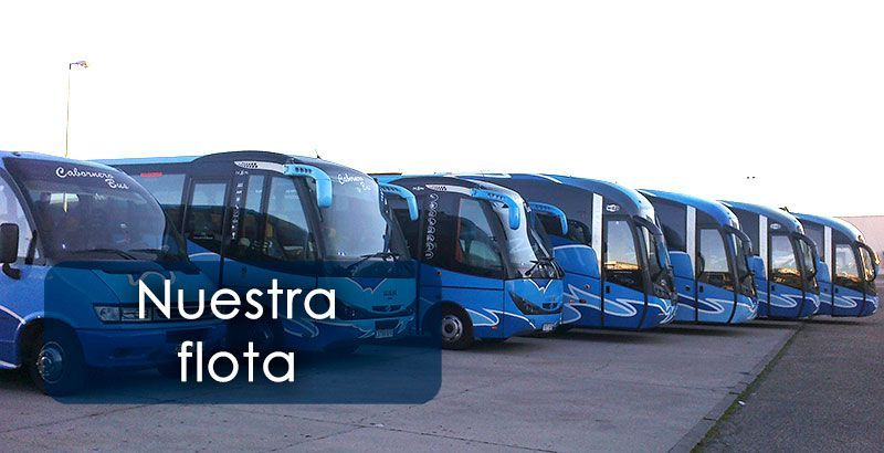 Flota Cabornero Bus